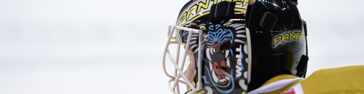 Nottingham Panthers 2015/16 Season Review